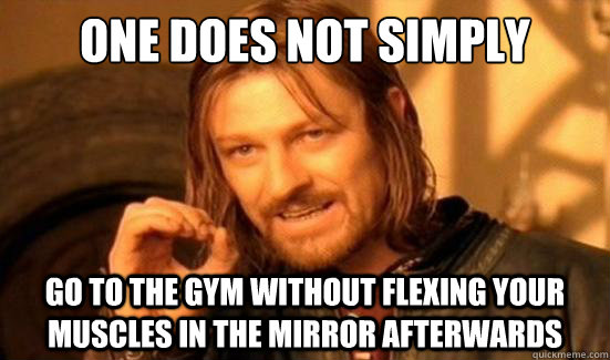 one does not simply go to the gym without flexing your muscl - Boromir