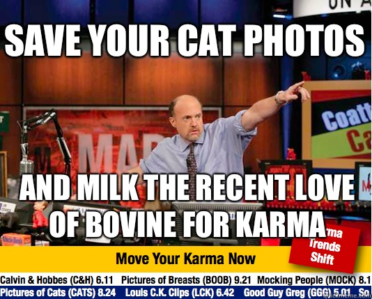 Save your cat photos And milk the recent love of bovine for  - Mad Karma with Jim Cramer