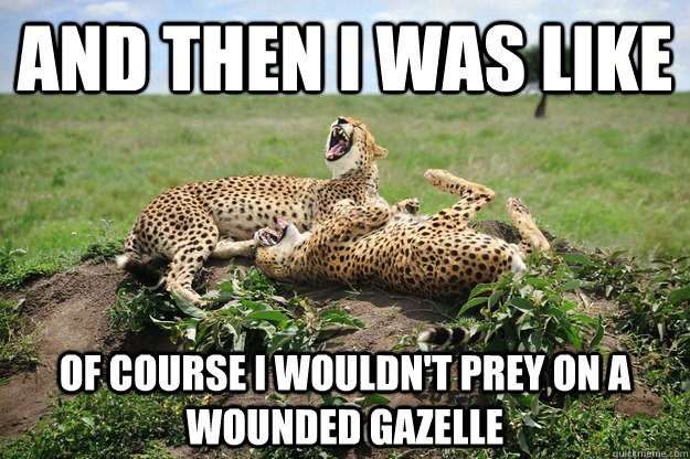 and then i was like of course i wouldnt prey on a wounded g - Laughing Cheetahs