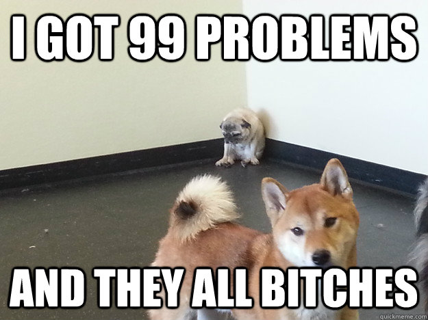 i got 99 problems and they all bitches -