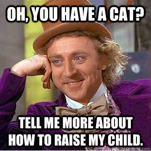 oh you have a cat tell me more about how to raise my chil - Condescending Wonka