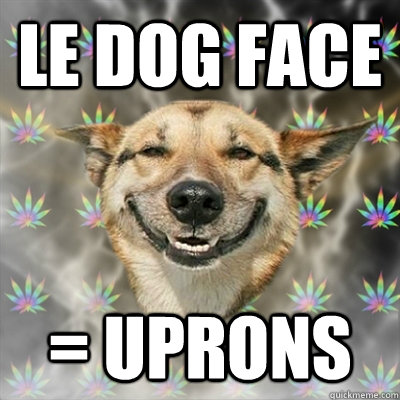 le dog face uprons - Stoner Dog