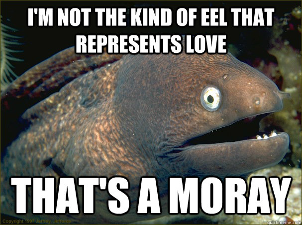 im not the kind of eel that represents love thats a moray - Bad Joke Eel