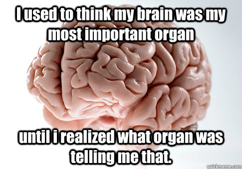 i used to think my brain was my most important organ until i - Scumbag Brain