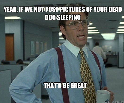 yeah if we not post pictures of your dead dog sleeping that - Scumbag boss