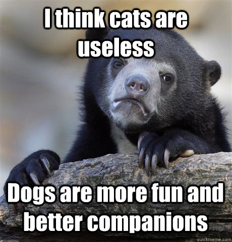 i think cats are useless dogs are more fun and better compan - Confession Bear