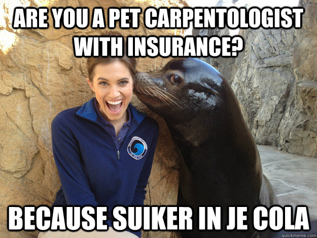 are you a pet carpentologist with insurance because suiker  - Crazy Secret