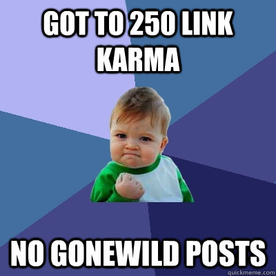 got to 250 link karma no gonewild posts - Success Kid