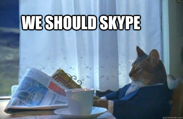 we should skype - Sophisticated Cat