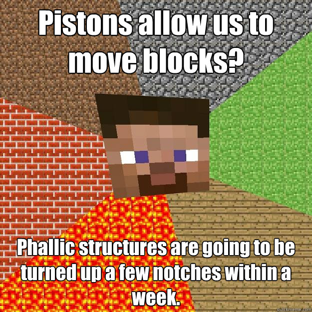 pistons allow us to move blocks phallic structures are goin - Minecraft