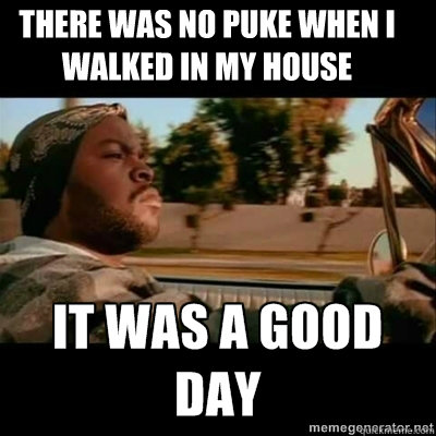 there was no puke when i walked in my house - ICECUBE