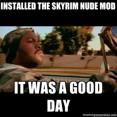 installed the skyrim nude mod - ICECUBE