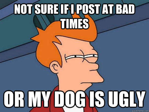 not sure if i post at bad times or my dog is ugly - Futurama Fry