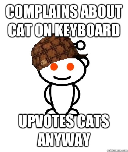 Complains about cat on keyboard Upvotes cats anyway - Scumbag Redditor