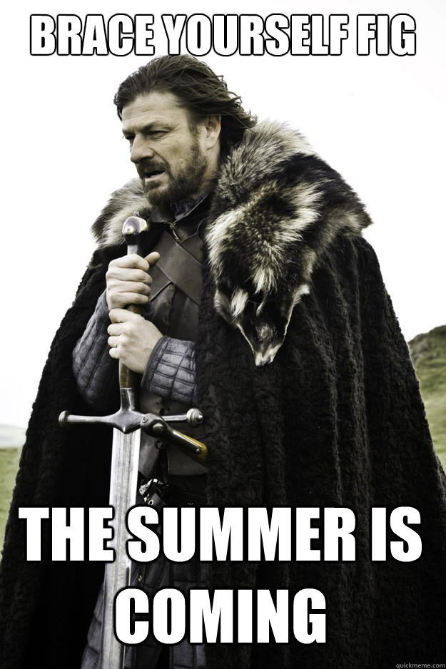 brace yourself fig the summer is coming - Winter is coming