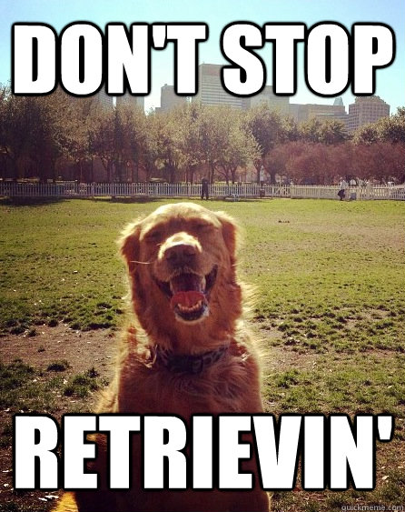 dont stop retrievin - 