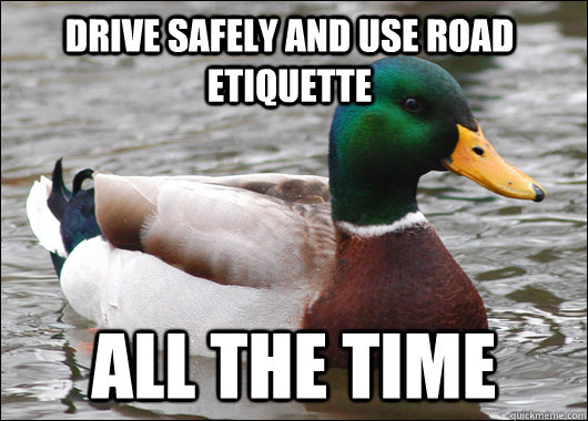 drive safely and use road etiquette all the time - Actual Advice Mallard