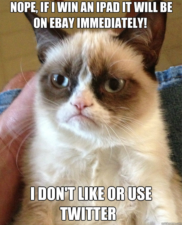 nope if i win an ipad it will be on ebay immediately i d - Grumpy Cat