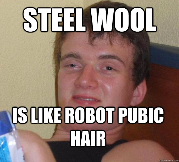steel wool is like robot pubic hair - 10 Guy