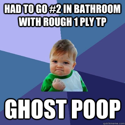 had to go 2 in bathroom with rough 1 ply tp ghost poop - Success Kid