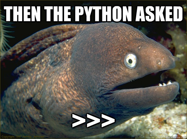 then the python asked  - Bad Joke Eel