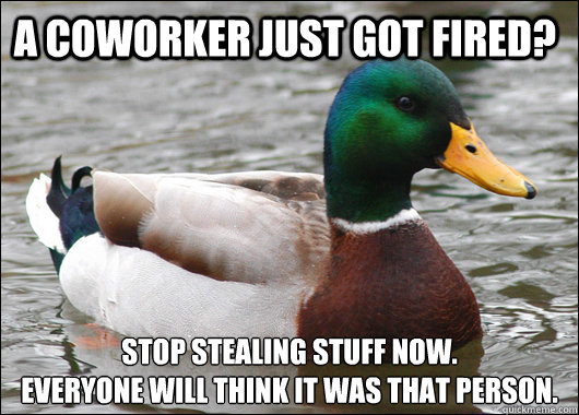 a coworker just got fired stop stealing stuff now everyon - Actual Advice Mallard