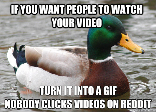 if you want people to watch your video turn it into a gif no - Actual Advice Mallard
