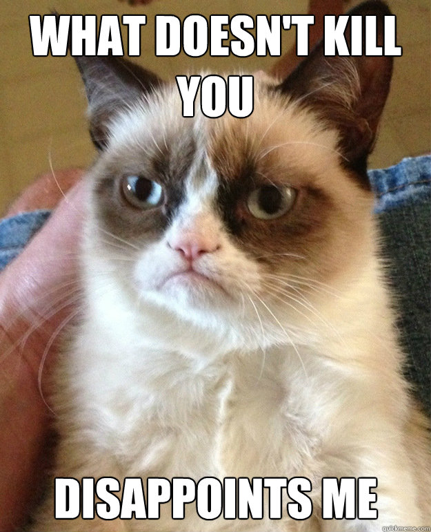 what doesnt kill you disappoints me - Grumpy Cat