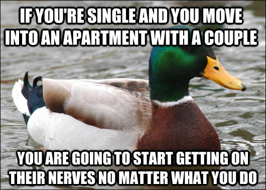 if youre single and you move into an apartment with a coupl - Actual Advice Mallard