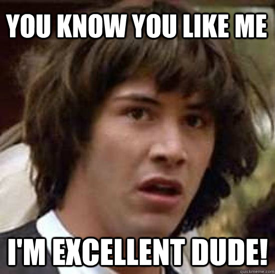 you know you like me im excellent dude - conspiracy keanu