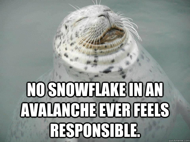 no snowflake in an avalanche ever feels responsible - Zen Seal