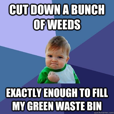 cut down a bunch of weeds exactly enough to fill my green wa - Success Kid