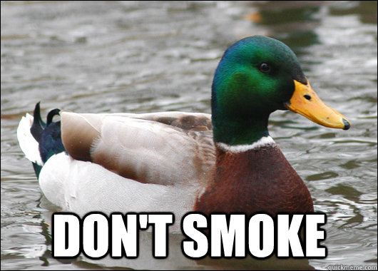 dont smoke - Actual Advice Mallard