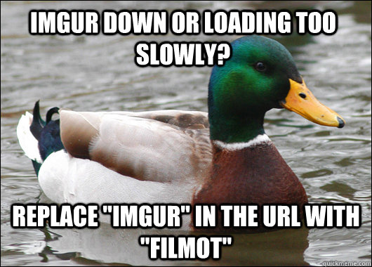 imgur down or loading too slowly replace imgur in the url - Actual Advice Mallard
