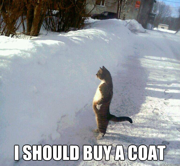 i should buy a coat -