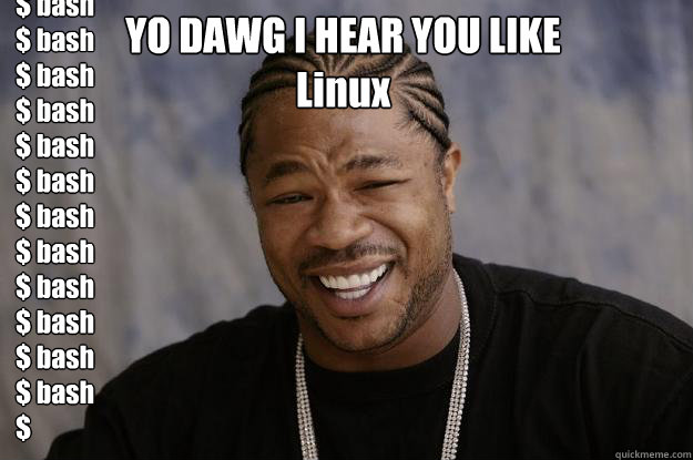 yo dawg i hear you like linux bash bash bash bash  - Xzibit meme
