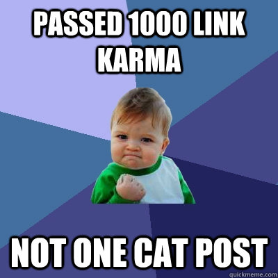 passed 1000 link karma not one cat post - Success Kid