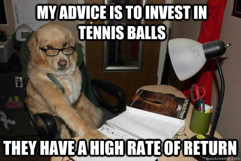 my advice is to invest in tennis balls they have a high rate - Financial Advice Dog