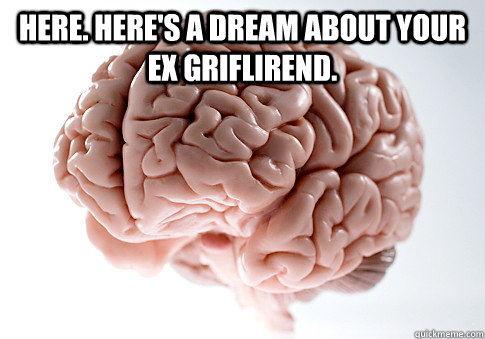 here heres a dream about your ex griflirend  - Scumbag Brain