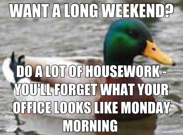 WANT A LONG WEEKEND? DO A LOT OF HOUSEWORK   YOU'LL FORGET W - duck