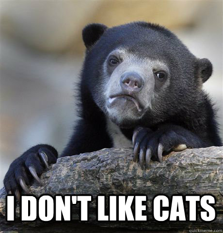 i dont like cats - Confession Bear