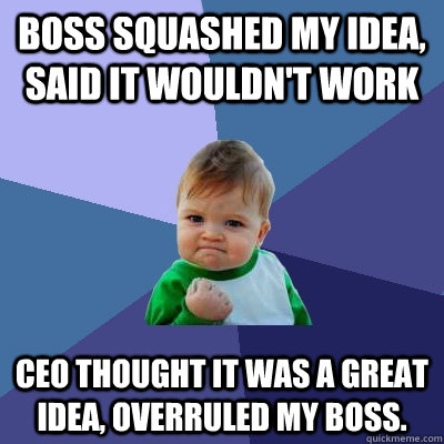 boss squashed my idea said it wouldnt work ceo thought it  - Success Kid