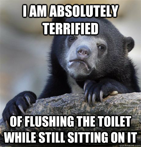 i am absolutely terrified of flushing the toilet while still - confessionbear
