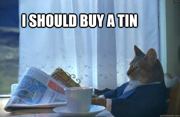 i should buy a tin - Sophisticated Cat