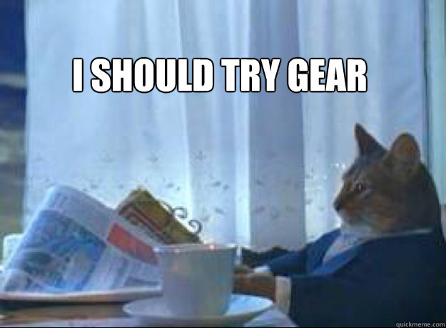 i should try gear  - I should buy a boat cat