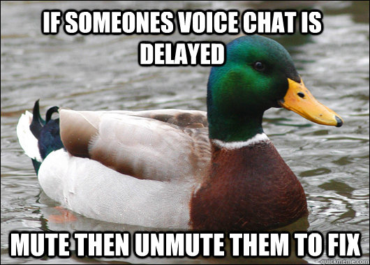 if someones voice chat is delayed mute then unmute them to f - Actual Advice Mallard