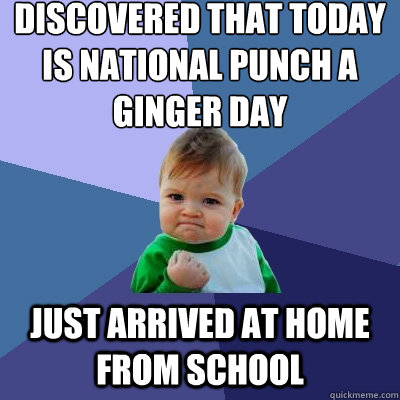 discovered that today is national punch a ginger day just ar - Success Kid
