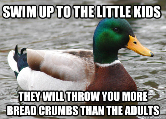 swim up to the little kids they will throw you more bread cr - Actual Advice Mallard
