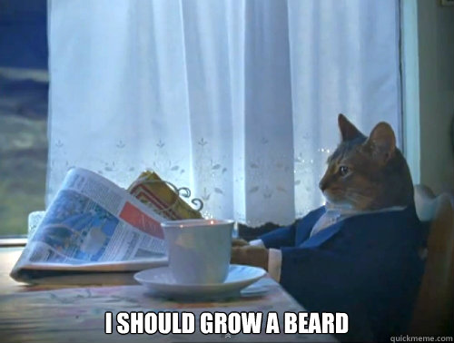 i should grow a beard - 120Cat