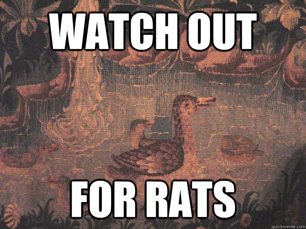 watch out for rats - Medieval Advice Mallard